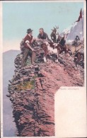 Chèvre Et Chevrier Dans Les Alpes (cpn 71) - Animaux & Faune