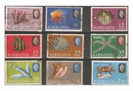 BARBADOS 1965 - 1969 MARINE LIFE VALUES TO $2.50 FINE USED MINIMUM Cat £5.20 - Barbados (...-1966)