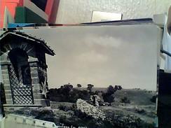 FRASCATI  ACROPOLI TUSCOLANA  VB1965 FQ5675 - Italia
