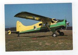 Sept16   76590   Avion   Beavair   C2 - Flugzeuge