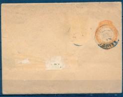 BRASIL 1894 , FAJA PARA PRENSA , RIO GRANDE DO SUL - Brasil