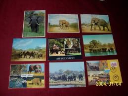 LOT DE 9 CARTES   POSTALE SUR  LE THEME DE L'ELEPHANT - Elephants