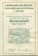 Schweiz - Landeskarte Der Schweiz 1:50 000 - Walenstadt Blatt 237 - Eidgenössische Landestopographie Bern 1963 - Mit Rel - Topographische Karten