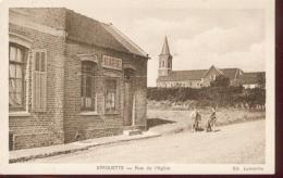 Berguette 62.M3974 - France