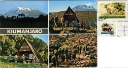 TANZANIA  KILIMANJARO  Peak Of Africa Nice Stamps  Animals Theme - Tanzania