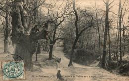 ROBINSON LA CHATAIGNERAIE A LA VALLEE AUX LOUPS - Francia