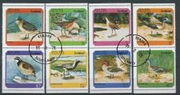 Staffa   Schotland       Vogels       (O) - Emissione Locali