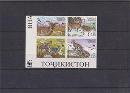 TAJIKISTAN 2005 WWF Imperforated MNH With Capricorn. - Unused Stamps