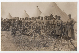 MLITAIRES - Tirailleurs Algériens - Regiments