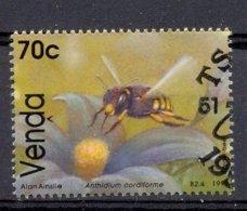 Mkb443 FAUNA INSECTEN HONINGBIJ BIJEN BLOEMEN FLORA FLOWERS BEES BIEN INSECTS VENDA 1992 Gebr/used - Honeybees