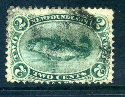 Newfoundland 1865-70 New Currency - 2c Atlantic Cod Used (SG 31) - Newfoundland