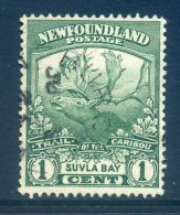 Newfoundland 1919 Newfoundland Contingent - 1c Suvla Bay Used (SG 130) - 1908-1947