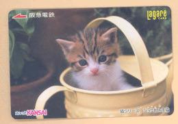 JAPAN Prepaidkarte - Tiere, Katzen, Cat - - Katzen