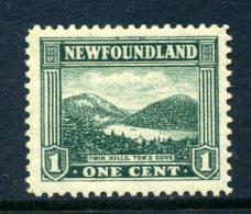 Newfoundland 1923-24 Definitives - 1c Twin Hills, Tor's Cove HM (SG 149) - 1908-1947