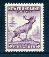 Newfoundland 1932 Definitives - 5c Caribou HM (SG 213) - 1908-1947
