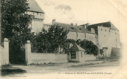 MONTS SUR GUESNES(VIENNE) - Monts Sur Guesnes
