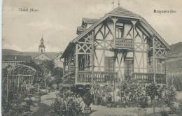 68, Haut-Rhin, RIQUEWIHR, 1045 Habitants, Chalet Meyer, Scan Recto-Verso - Riquewihr