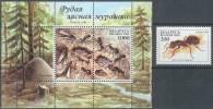 INSECTOS/HORMIGAS - BIELORUSIA 2002 - Yvert #   - MNH ** - Insectos