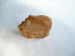 Großer Natur-Bernstein Gelb 15gr.    (329) - Minerals & Fossils