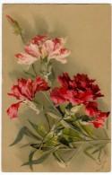 FIORI - GAROFANI - C. KLEIN  - Vedi Retro - Fleurs