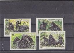 RWANDA 1985 WWF Imperforated MNH With Gorilla. - W.W.F.