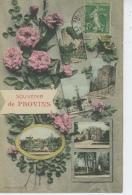 """PROVINS - Jolie Carte Fantaisie Fleurs Et Vues Multiples """" Souvenir De PROVINS """" - Provins"""