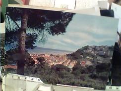 CUPRAMARITTIMA    VB1981 FQ5751 - Ascoli Piceno