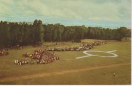 (CONG6) VOYAGE DU ROI BELGE AU CONGO. 1955. KITEGA - Congo Belga - Altri