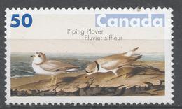 Canada 2005. Scott #2096 (MNH) Bird Paintings By John James Audubon. Piping Plover - 1952-.... Règne D'Elizabeth II