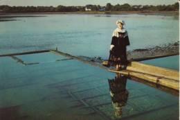 PENVINS -  Sur Les Parcs à Huîtres,  Jeune Fille De Penvins - Costume Presqu´île De Rhuys (JP- D 196) - Sarzeau