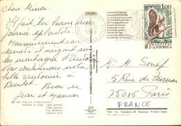 ANDORRE - Oblitération D 'Andorre Sur Carte Postale Pour La France 1979 - A Voir - L  3723 - Cartas
