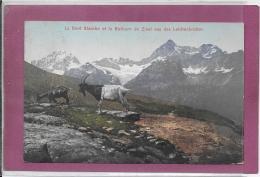 LA DENT BLANCHE ET LE ROTHORN DE ZINAL VUS DES LEICHENBRETTER ( Chêvres ) - VS Valais