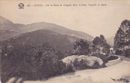 Cpa-20-2 A-guagno- Route, Dans Les Fond Poggiolo Et Soccia-edi Tomasi N°187 - France