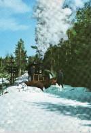 Schwedische Eisenbahn