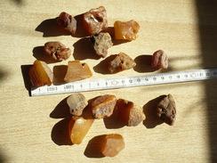 Konvolut Natur-Bernsteine Gelb/braun  (338) - Mineralien & Fossilien