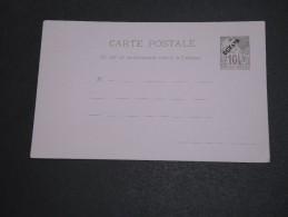 FRANCE / GUYANE - Entier Postal  Type Dubois - A Voir - L  3907 - Guyane Française (1886-1949)
