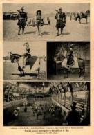 Düsseldorfer Ausstellung / Ritterspiele In Budapest  /  Druck Aus Zeitschrift , 1902 - Revues & Journaux