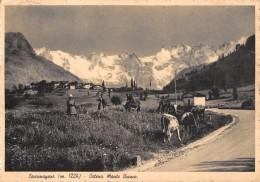 "04884 ""(AO) COURMAYEUR M. 1224 - CATENA MONTE BIANCO"" ANIMATA, MUCCHE. CART  SPED 1942 - Italia"