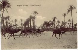 LIBIA LIBIE TRIPOLI ITALIANA VIALE BAMAMJE    L800 - Libya