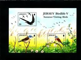 JERSEY - 2011  SUMMER VISITING BIRDS (3)  MS  MINT NH - Jersey