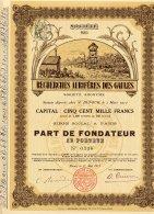 SOCIETE DE RECHERCHES AURIFERES DES GAULES 1912 - Mines