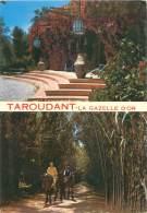 CPM - TAROUDANT - La Gazelle D'Or - Maroc