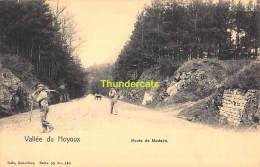 CPA  VALLEE DU HOYOUX ROUTE DE MODAVE NELS SERIE 55 NO 140 - Modave