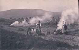 Scènes De La Campagne, Récolte Des Pommes-de-Terre (9245) - Cultures
