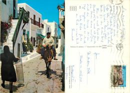 Donkey, Crete, Greece Postcard Posted 1985 Stamp - Grecia