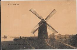 CPA Belgique Belgie Moulin à Vent Non Circulé DOEL - Belgique