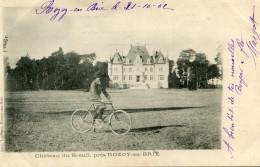 CHATEAU DU BREUIL(SEINE ET MARNE) ROZOY EN BRIE - France