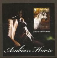 Montserrat 2011 -Arabian Horse - Equus Caballus - Cheval Arabe - Bloc MNH - Montserrat