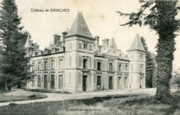 CHATEAU DE BRINCHES(SEINE ET MARNE) - Francia