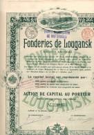 Fonderies De Lougansk - Industrie